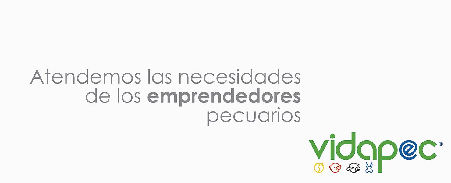 https://vidapec.com/wp-content/uploads/2018/01/Ppal05-Vidapec.png